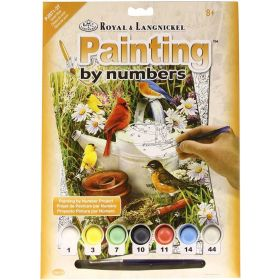 Royal & Langnickel: Painting by Numbers Junior Small (Garden Birds)