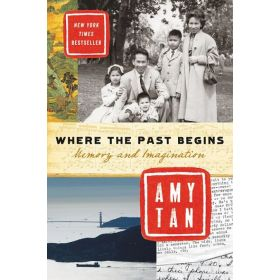 Where the Past Begins: Memory and Imagination (Paperback)