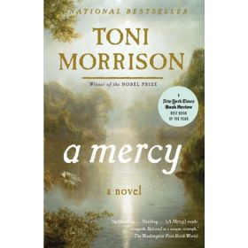 A Mercy (Paperback)
