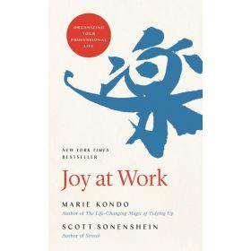 Joy At Work: Organizing Your Professional Life (Hardcover)