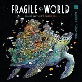 Fragile World (Paperback)