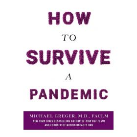 How to Survive a Pandemic (Paperback)