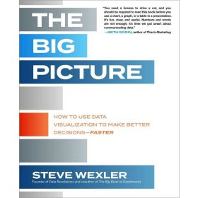 The Big Picture: How to Use Data Visualization to Make Better Decisions―Faster (Paperback)
