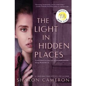 The Light in Hidden Places (Hardcover)