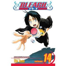 Bleach, Vol. 14 (Paperback)