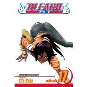 Bleach, Vol. 17 (Paperback)