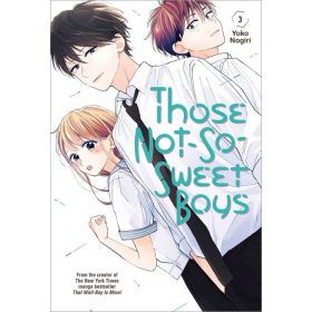 Those Not-So-Sweet Boys, Vol. 3 (Paperback)