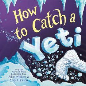 How to Catch a Yeti (Hardcover)