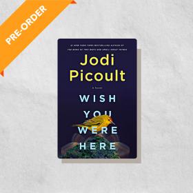 Wish You Were Here: A Novel (Hardcover)