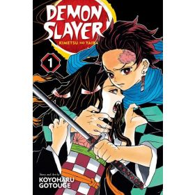 Demon Slayer: Kimetsu no Yaiba, Volume 1 (Paperback)