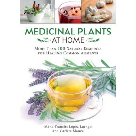 Medicinal Plants at Home : More Than 100 Natural Remedies for Healing Common Ailments (Paperback)