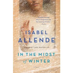 In the Midst of Winter: A Novel (Paperback)