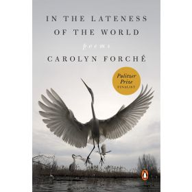 In the Lateness of the World: Poems (Paperback)