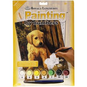 Royal & Langnickel: Painting by Numbers (Puppy Blues)