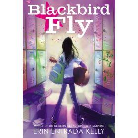 Blackbird Fly (Paperback)
