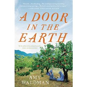 A Door in the Earth (Paperback)