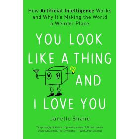You Look Like a Thing and I Love You: How Artificial Intelligence Works and Why It's Making the World a Weirder Place (Paperback)