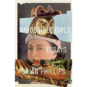 Impossible Owls: Essays (Paperback)