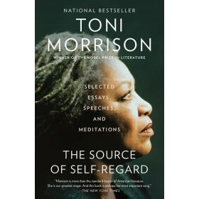 The Source of Self-Regard (Paperback)