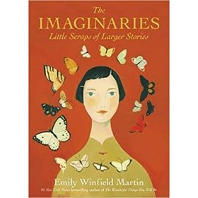 The Imaginaries: Little Scraps of Larger Stories (Hardcover)