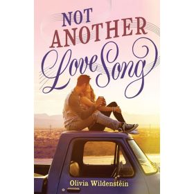 Not Another Love Song (Hardcover)