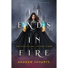It Ends in Fire (Hardcover)