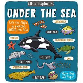 Little Explorers: Under the Sea (Board Book)