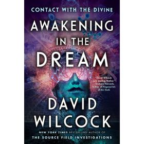 Awakening in the Dream: Contact with the Divine (Paperback)