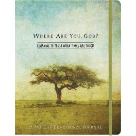 Where Are You, God?: A 365 Day Devotional Journal (Diary)
