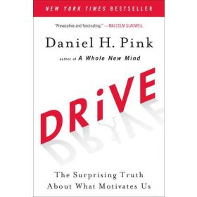 Drive: The Surprising Truth About What Motivates Us (Paperback)