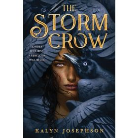 The Storm Crow (Paperback)