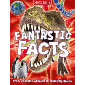Fantastic Facts (Paperback)