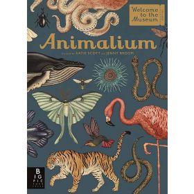 Animalium: Welcome To The Museum (Hardcover)