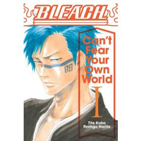 Bleach: Can't Fear Your Own World, Vol. 1 (Paperback)