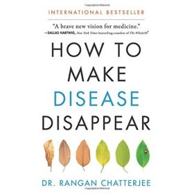 How to Make Disease Disappear (Hardcover)