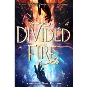 Divided Fire (Hardcover)