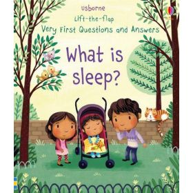 What is Sleep?: Lift-The-Flap Very First Questions And Answers (Board Book)